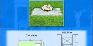 Angelicum lawn lots