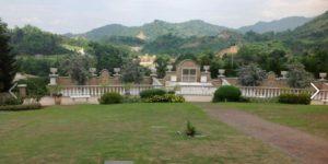 Golden haven lawn 2